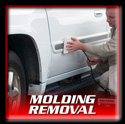 Molding Removal Applications